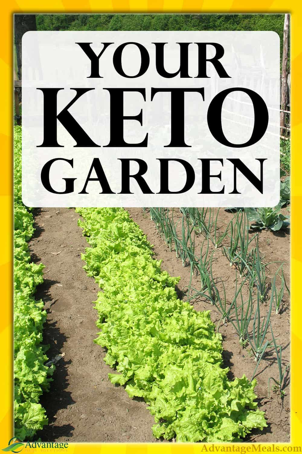 Plant a Keto Garden and you\'ll have better and cheaper food for your keto diet.  If budget keto is a concern for you, you should supplement your keto way of eating with a ketogenic garden. #Keto #AdvantageMeals @AdvantageMeals
