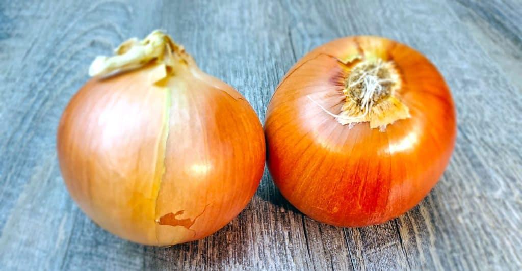 Picture of two onions